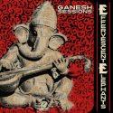 December in Effervescent Elephants' new album
