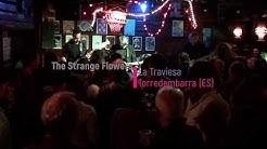 Excerpt of The Strange Flowers gig at La Traviesa,